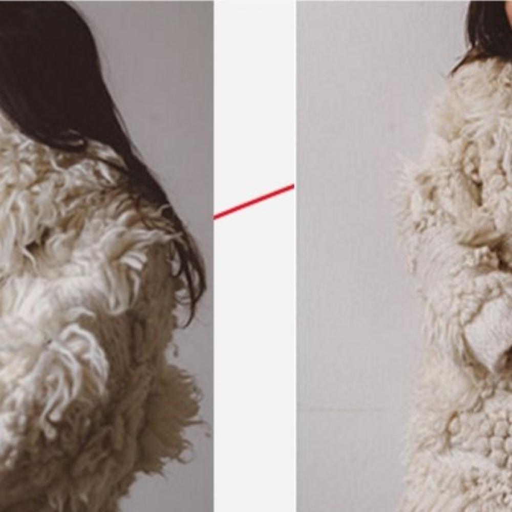 wool fur - pelliccia lana